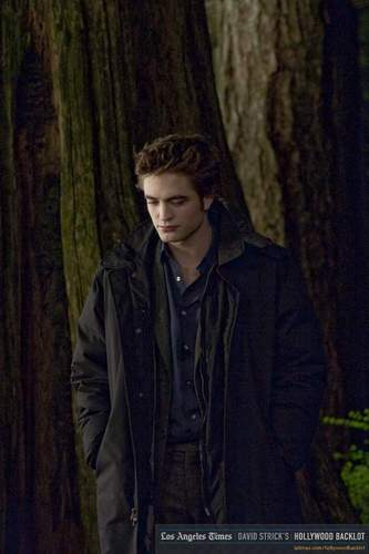 New moon - Behind Scenes