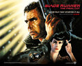Official Blade Runner wolpeyper