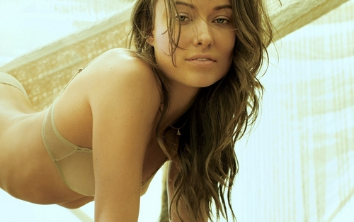 Olivia Wilde Hintergrund with a bikini entitled Olivia On The strand
