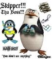 Skipper pix