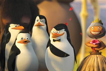 Skipper: The penguins of madagascar wallpaper entitled Skipper pix