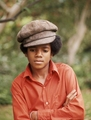 Small)) - michael-jackson photo