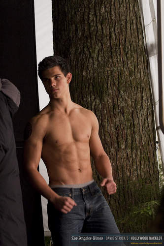 Jacob Black wallpaper containing a hunk entitled Taylor/Jacob *