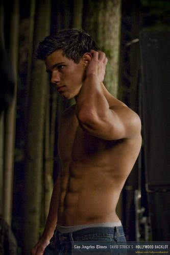Jacob Black wallpaper containing a hunk titled Taylor/Jacob *