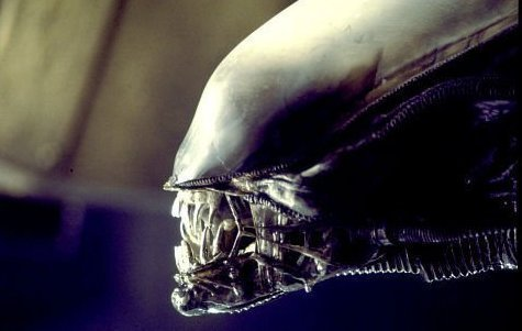The Alien Creature