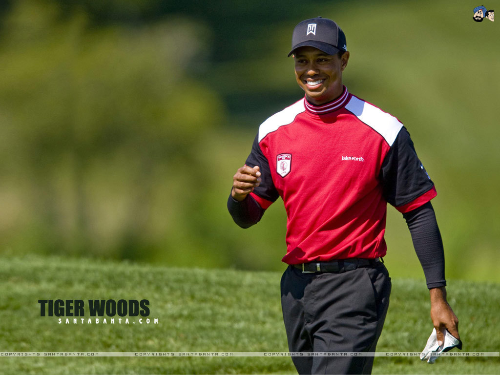 tiger woods forum