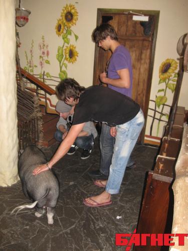 alex and ....a pig:)