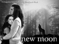 jacob x bella 1 - twilight-series photo