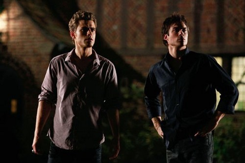 ছবি still of Damon and Stefan