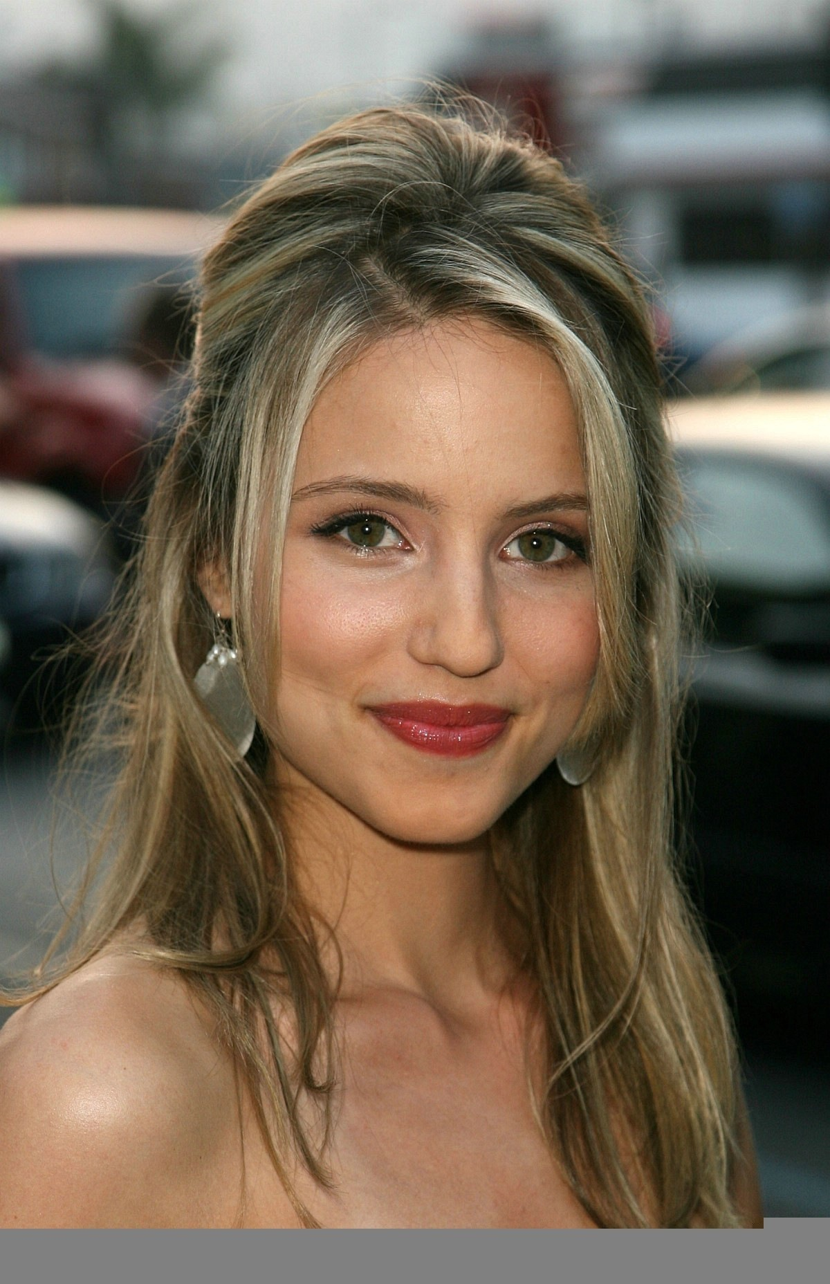 Download this Dianna Agron picture