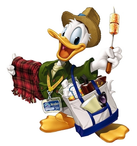 Donald canard all set for Vacation