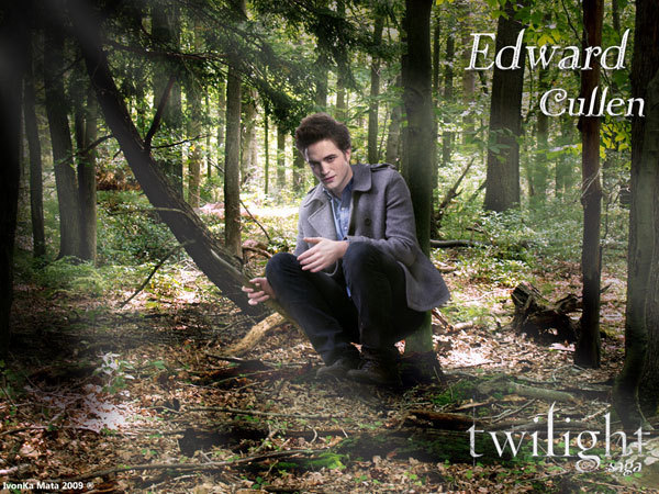 Edward at the Forest!