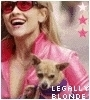 Legally Blonde 写真 probably with a チワワ and a portrait entitled Elle Woods!!!!
