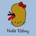 Hello Kidney