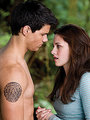 MQ New Moon Still - twilight-series photo