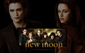 New Moon Wallpaper - new-moon-movie wallpaper