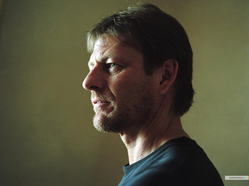 Sean Bean wallpaper probably containing a portrait called Sean Bean