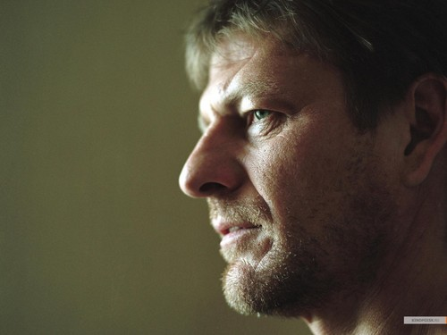 Sean Bean wallpaper possibly containing a portrait titled Sean Bean