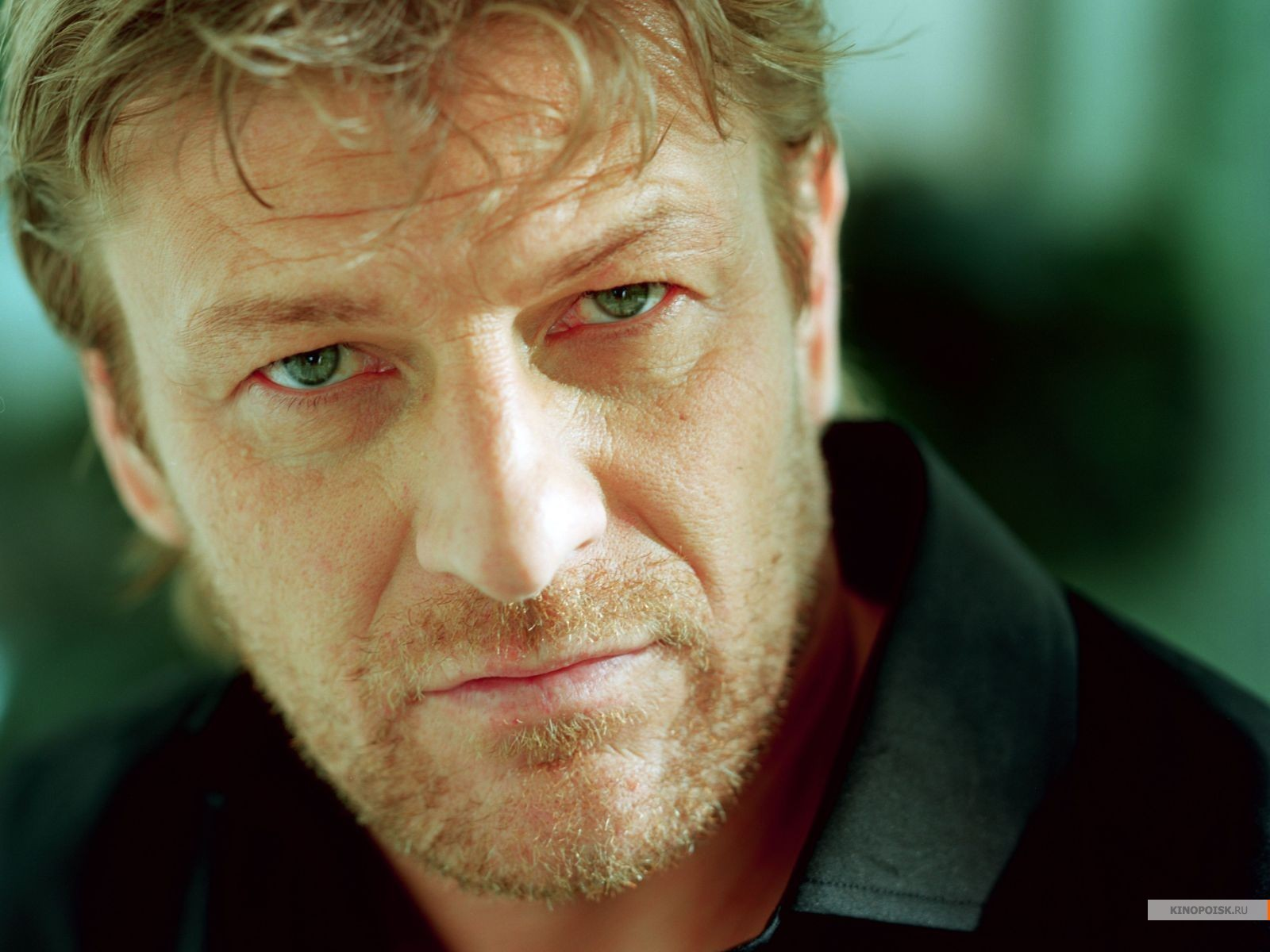 Sean Bean - Wallpaper Hot
