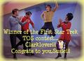 Winner of the First Star Trek TOS contest - star-trek photo