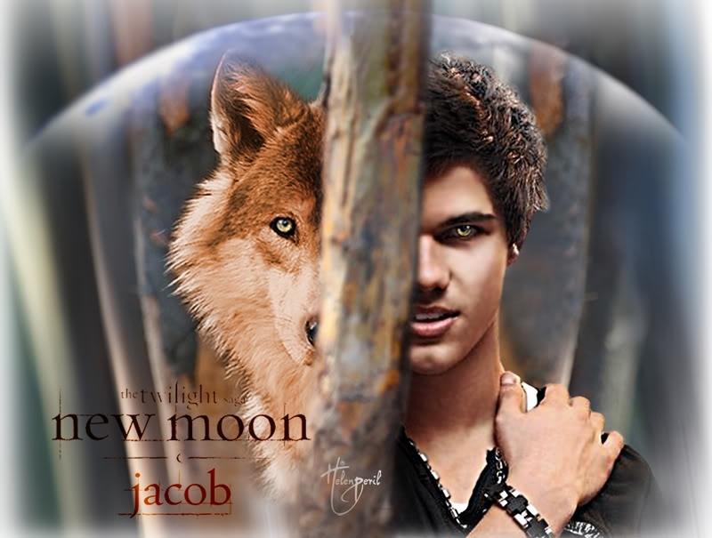 Twilight series jacob