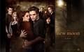 new moon wallpaper 2 - twilight-series photo