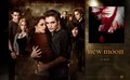 new moon wallpaper 5 - twilight-series photo