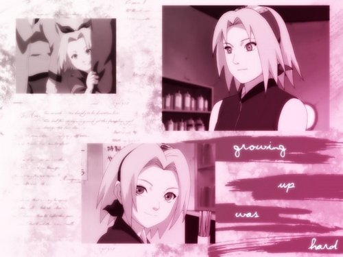 Haruno Sakura wallpaper possibly with a sign, a newspaper, and a portrait titled sakura  in  the best¡¡