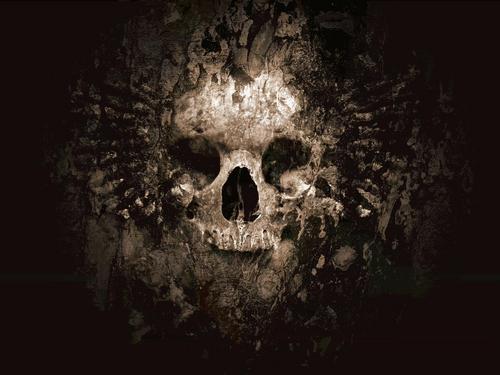 skull achtergrond