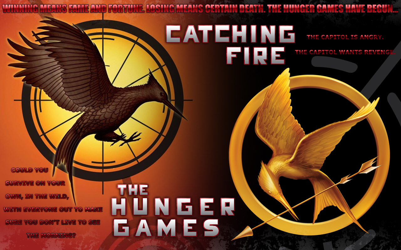 the hunger games trilogy - Catching Fire Wallpaper ...