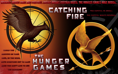 the hunger games trilogy  - catching-fire Wallpaper