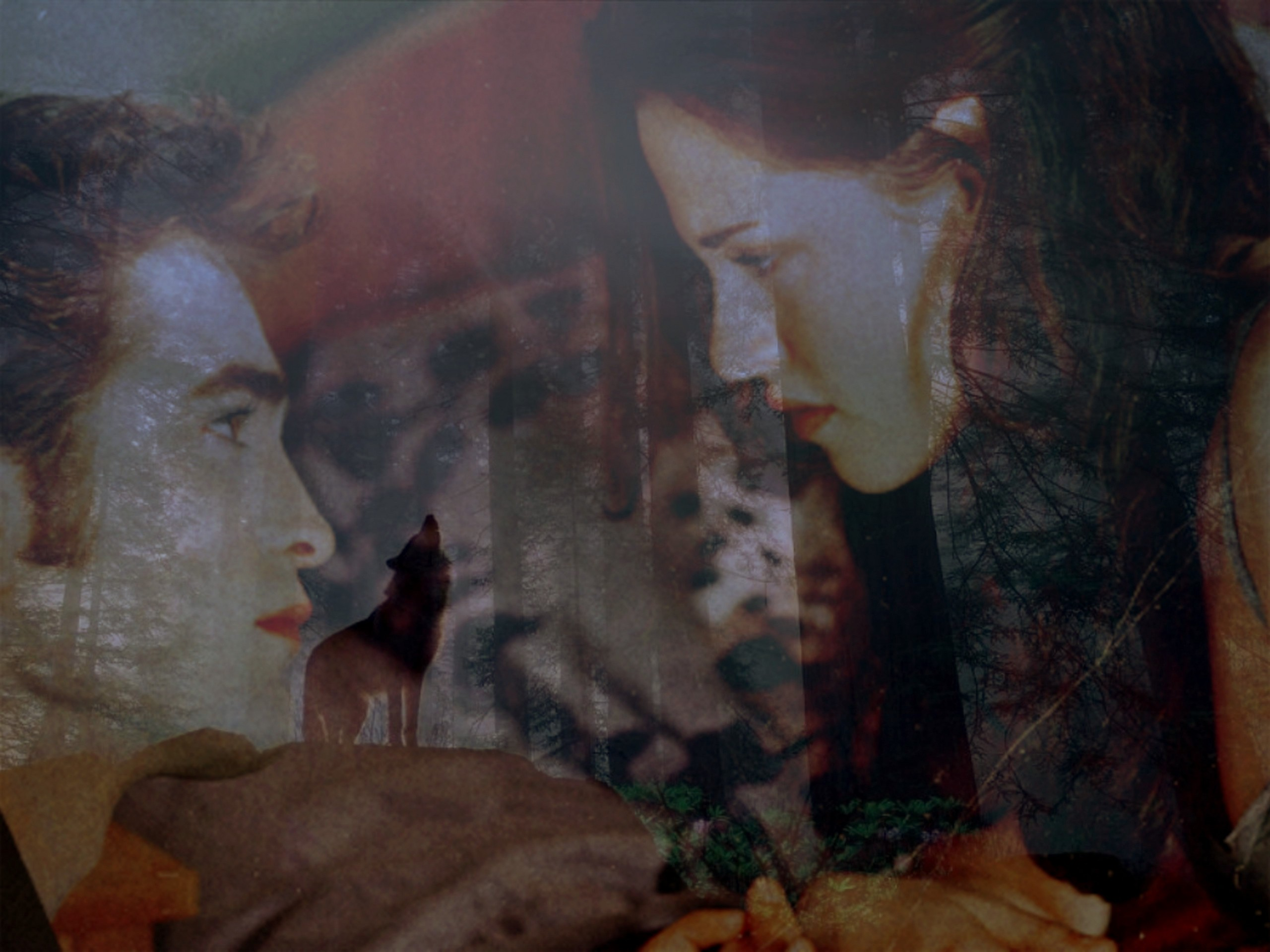 :) - edward-and-bella wallpaper