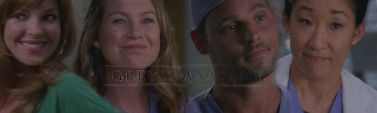http://images2.fanpop.com/images/photos/8400000/6x03-greys-anatomy-8442900-1280-384.jpg