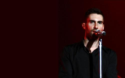 Adam Levine wallpaper possibly with a concert titled Adam Levine