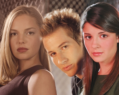 Roswell wallpaper containing a portrait called Cast