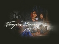 damon-and-elena - Damon & Elena wallpaper