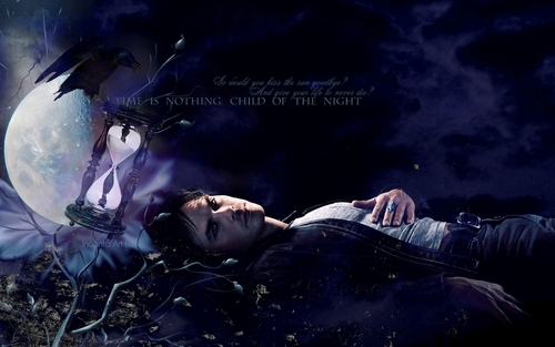 the vampire diaries wallpaper titled Damon Salvatore
