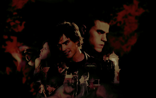 Damon and Stefan Salvatore wallpaper containing a concert entitled Damon & Stefan