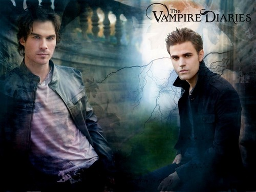 Damon and Stefan Salvatore 壁紙 possibly with a business suit, a well dressed person, and a sign called Damon & Stefan