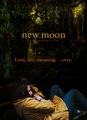 Fan Made New Moon Posters