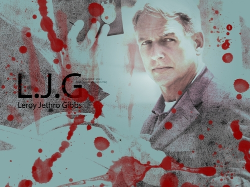 NCIS wallpaper entitled Gibbs