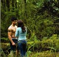 New Moon Companion pics HQ - twilight-series photo
