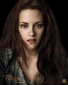New Moon Promotional Poster - team-volturi photo