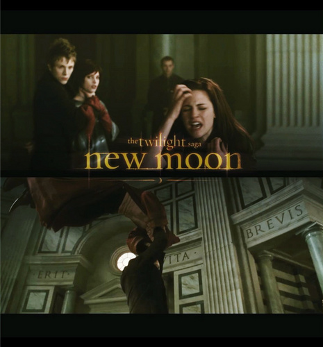 The Volturi wallpaper probably with anime entitled New Moon