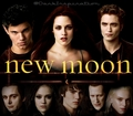 New Moon! - twilight-series photo