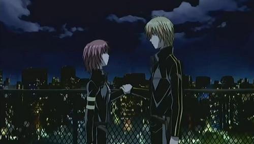 Sakura and shindo