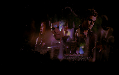 The Vampire Diaries wallpaper possibly containing a concerto called Stefan & Elena