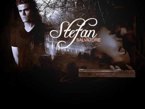 Stefan Salvatore 壁纸 with a sign titled Stefan Salvatore