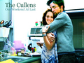 The Cullens (None cares right now, I know, but it's really sweet :DDD) - twilight-series photo