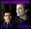 Twilight/New Moon - twilight-series photo